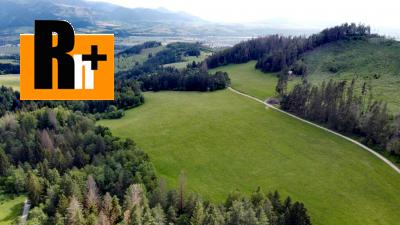 Gbeľany - tichá lokalita, na predaj orná pôda - TOP ponuka