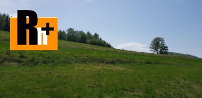 Oščadnica s pozemkom 3766m2 chalupa na predaj - TOP ponuka 13