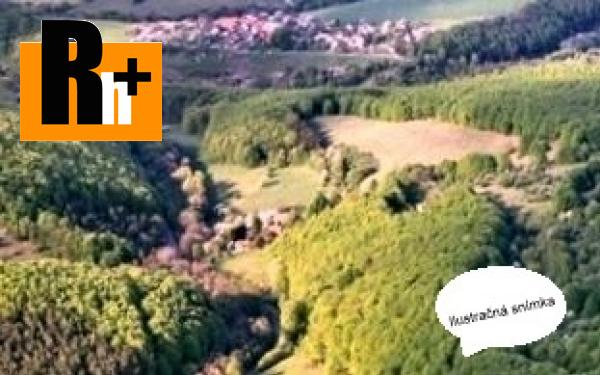 Foto Veľké Pole trvalý trávnatý porast na predaj - 92600m2