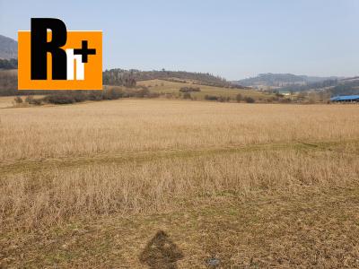 Orná pôda Nededza investičný pozemok na predaj