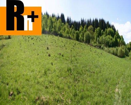 Foto Na predaj Bytča Hôzdnica trvalý trávnatý porast
