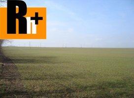 Križovany nad Dudváhom Záhumie orná pôda na predaj