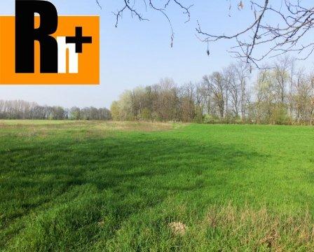 Foto Lúčnica nad Žitavou na predaj orná pôda