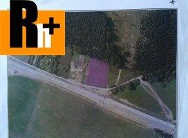 Na predaj Kysucké Nové Mesto trvalý trávnatý porast
