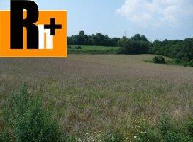 Na predaj orná pôda Kolárovice kolárovice - znížená cena