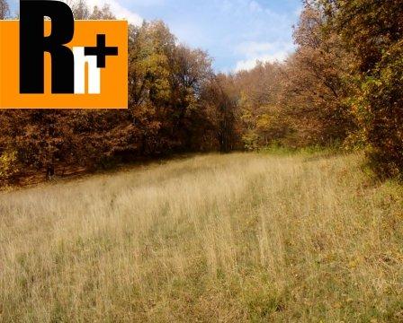 Foto Bojnice trvalý trávnatý porast na predaj - 1300m2