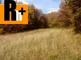 Trvalý trávnatý porast na predaj Bojnice - 1250m2