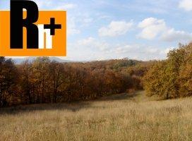 Bojnice na predaj trvalý trávnatý porast - 2399m2