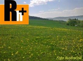 Moravany nad Váhom orná pôda na predaj - exkluzívne v Rh+