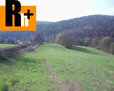 Foto Na predaj Dolná Súča slnečný pozemok trvalý trávnatý porast - TOP ponuka