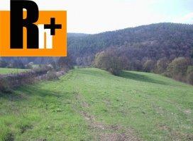 Na predaj Dolná Súča slnečný pozemok trvalý trávnatý porast - TOP ponuka