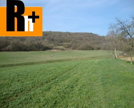 Foto Chocholná-Velčice okraj obce trvalý trávnatý porast na predaj - znížená cena