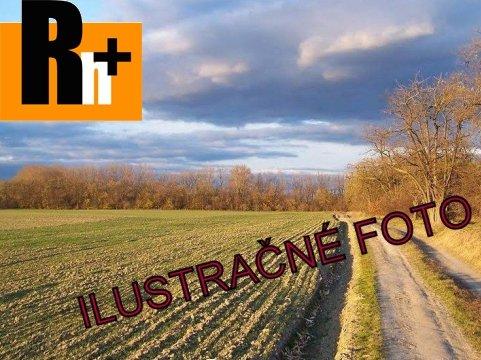 3. obrázok Poľnohospodárska pôda Senec na predaj - 100000m2