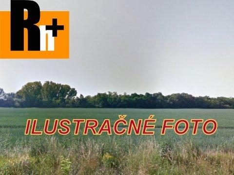 5. obrázok Poľnohospodárska pôda Senec na predaj - 100000m2