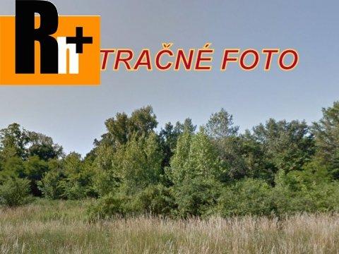 6. obrázok Poľnohospodárska pôda Senec na predaj - 100000m2
