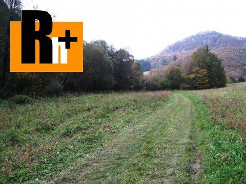 2. obrázok Na predaj pozemok pre komerčnú výstavbu Beluša Belušské Slatiny