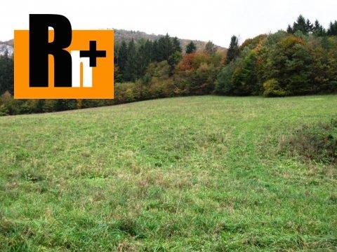 4. obrázok Na predaj pozemok pre komerčnú výstavbu Beluša Belušské Slatiny