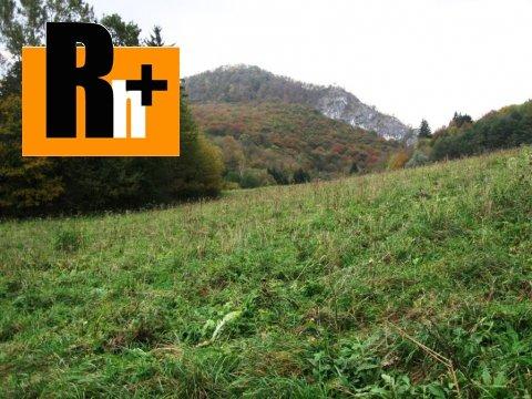 5. obrázok Na predaj pozemok pre komerčnú výstavbu Beluša Belušské Slatiny