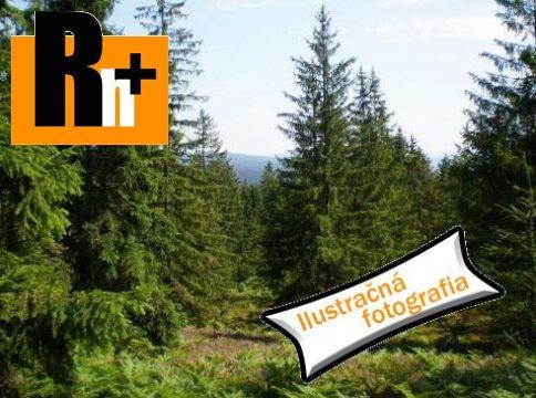 Foto Lesné pozemky Belá-Dulice na predaj