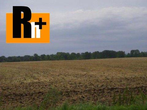 Foto Špačince spacince orná pôda na predaj - 82000m2