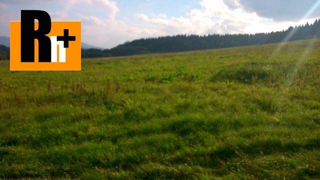 Foto Bytča Petrovice na predaj trvalý trávnatý porast