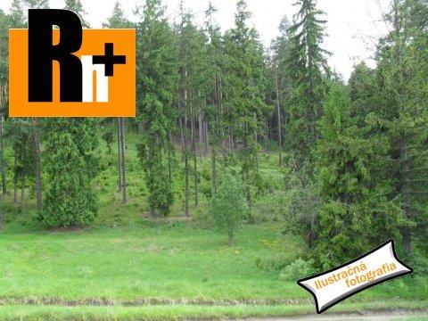 Foto Na predaj trvalý trávnatý porast Bytča Hlinik, za kanalom