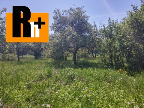 Foto Na predaj ovocné sady Čakanovce . -