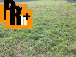 Trvalý trávnatý porast Rudinka na predaj